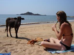 Goa Beaches Essay